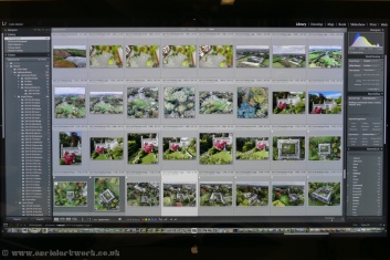 Adobe Lightroom screenshot of Colin Aldred's computer displaying a selection of client's photographs produced by Aerial Artwork