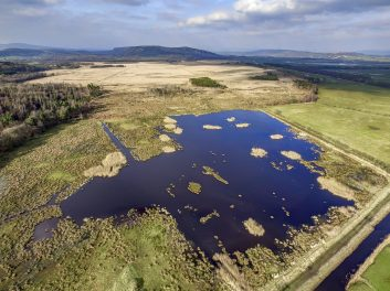 Aerial drone photograph of wetland area of Foulshaw Moss Nature Reserve in South Cumbria